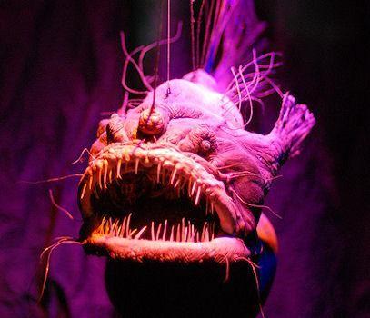 Spooky Deep-Sea Creatures  #boden #magicalmenagerie