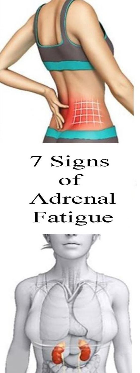 Adrenal fatigue is condition when adrenal glands have trouble to manage stress. People affected by this condition feel dullness, tiredness, and a burnout. Stress is the main reason for increased cortisol levels and exhausted body, which can lead to adrenal fatigue. Doctors not always diagnose this condition with ease, so you will need to monitor …