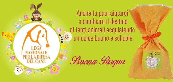 Anche tu puoi aiutarci a cambiare il destino di tanti #animali con i #dolci buoni e #solidali. #Pasqua #donisolidali