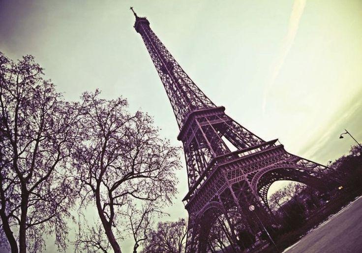 Paříž - Eiffelova věž fototapeta na zeď, obraz na Posters.cz