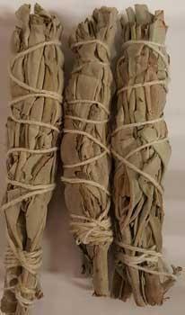 "White Sage Smudge Stick 3pk 3 1-2"""