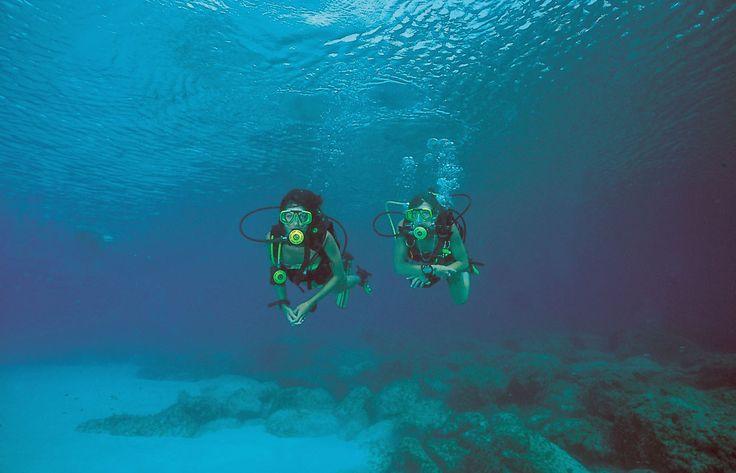 Cyprus, duiken, duikbestemming, duikvakantie, onderwaterwereld, scheepswrak, veerboot, Zenobia