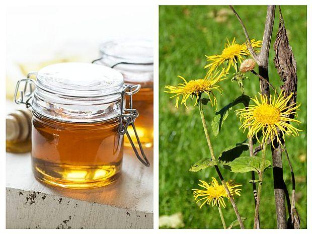 MIERE cu INULA – un remediu natural pentru afecțiunile GINECOLOGICE și DIGESTIVE, conceput de maicile de la Mănăstirea Nera | La Taifas