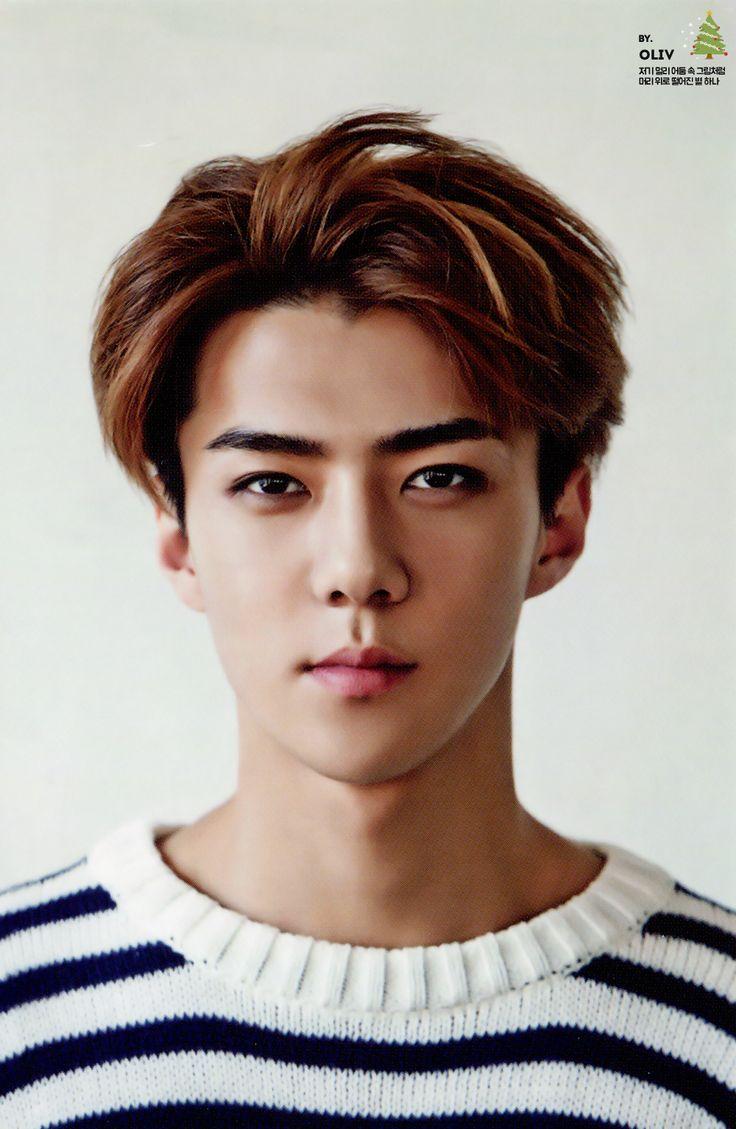 SEHUN // 2015 Season's Greetings official photocard | EXO ...