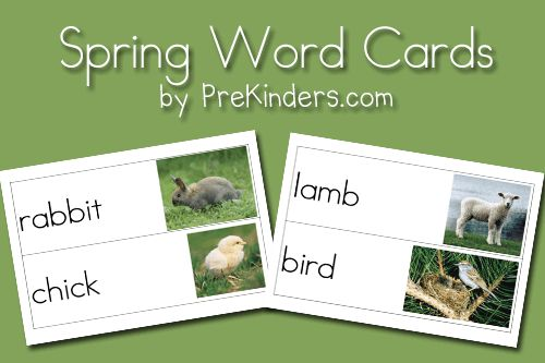 As promised, here is a new set of Spring Picture-Word Cards. I promised this set to my email subscribers near the end of last week… and well, it took me longer to get these done and posted than I had planned. But at last, here they are. This set has Spring and Easter words. I …