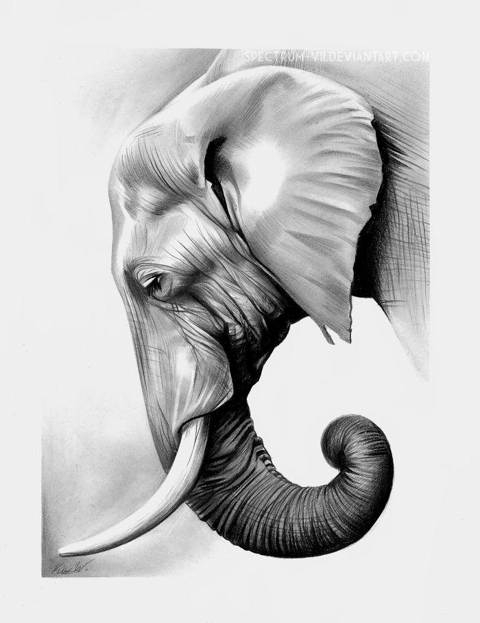 how to make sketch of elephant