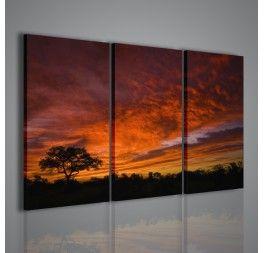 African Sunset - uno splendido quadro di un tramonto in un tipico paesaggio africano.