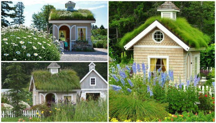 Озеленение крыши своими руками как способ сделать свой дом уникальным превратив его кровлю в зеленый газон, этапы озеленения крыши выбор растений видео фото