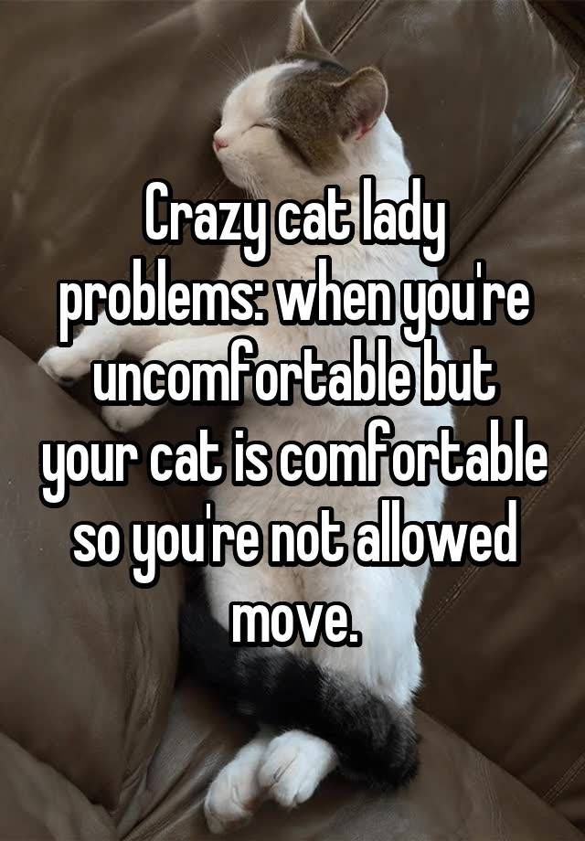 """Crazy cat lady problems: when you're uncomfortable but your cat is comfortable so you're not allowed move."""