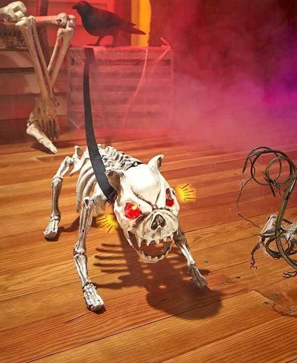 interactive light sound barking skeleton dog from ebay ship worldwide with borderlinxcom scary halloween decorationshalloween