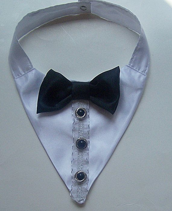 Tuxedo Dog Wedding Collar Dog Collar by miascloset on Etsy, $15.00