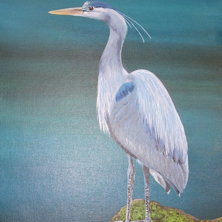 Blue Heron 2016, Acrylic Painting by Robyn Hall, New Zealand Artist