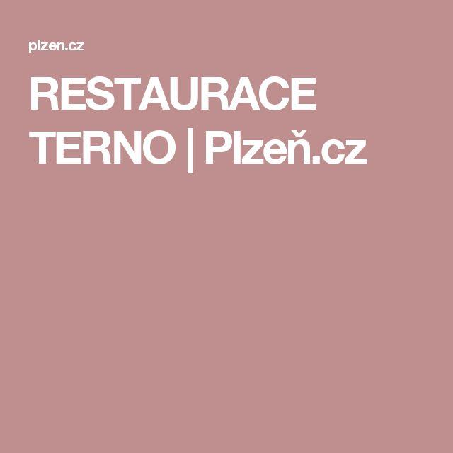 RESTAURACE TERNO | Plzeň.cz