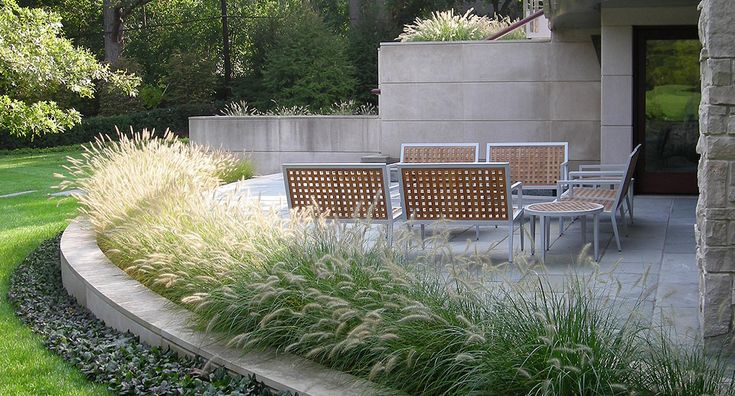 8 best images about pennisetum on pinterest gardens for Fountain grass landscaping ideas