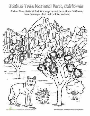 Joshua Tree Landscape Coloring Page | Kid\'s Corner | Pinterest ...
