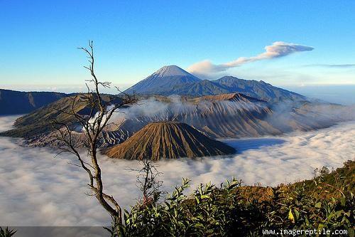 Gunung Bromo, Jawa Timur, Indonesia