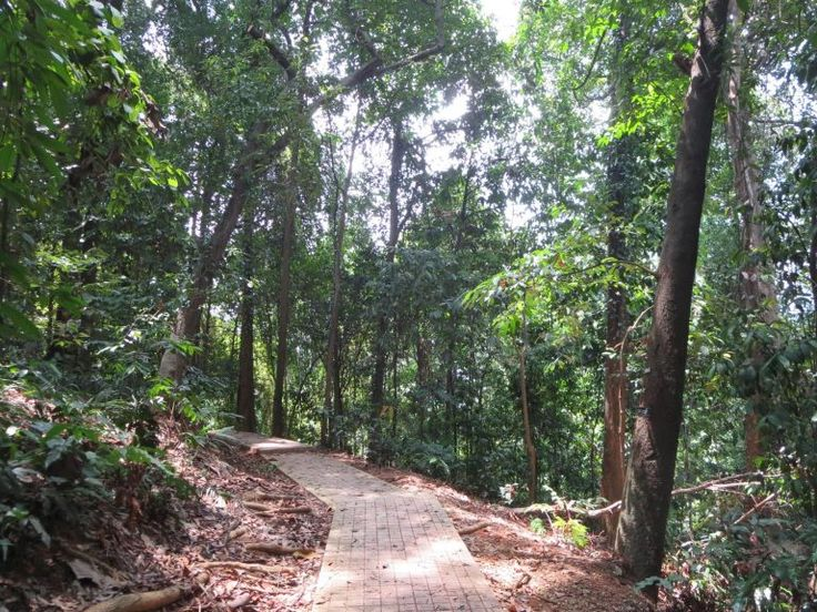 Menara KL- 360° Blick über die Stadt Bukit Nanas Forest Reserve, Kuala Lumpur, Malaysia