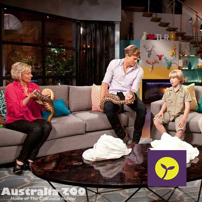 Australia Zoo's Robert Irwin drops by The Living Room. Testing the nerves of the hosts with slithering surprises, Robert Irwin talks about Wildlife Warriors partnership with Sprout. #australiazoo #sprout #wildlifewarrior #tiger #crocs #giraffe #steveirwin #sproutaus #case #cover