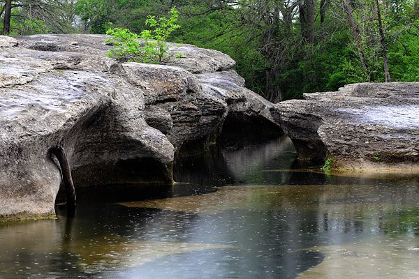 Mckinney Falls State Park  5808 Mckinney Falls Parkway  Austin, Texas 78744  Adult $6  Things to Do.... Camping, hiking, mountain biking, road biking, picnicking, fishing and wildlife observation are popular activities. Swimming is allowed in Onion Creek; call (512) 243-1643 for current creek conditions.  Children 12yrs and under free  Open 7 days a week  8am-10pm