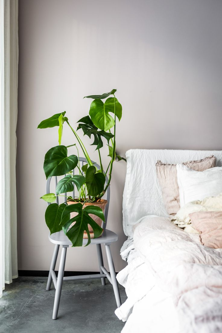 Sheets Dirty Linen and H&M Home. Repainted Chair from Mio Möbler. Plant monstera. Pot from Bergs Potter.