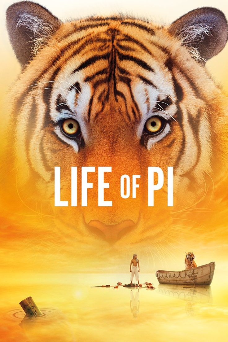 Life of Pi - a visually beautiful adaptation to the bestselling book by Yann Martel.