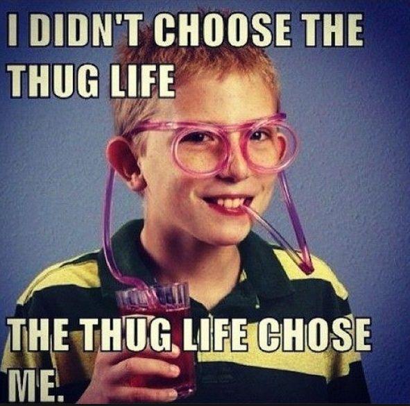 https://es.johnnybet.com/pronostico-chivas-toluca#picture?id=9998 #thuglife #lifestyle #kid #funnypics #followus