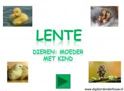 Digibordles Lente: moeder met kind http://digibordonderbouw.nl/index.php/themas/lente/lentedigibordlessen