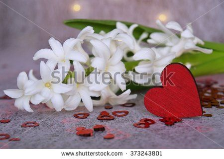 Hyacinths, red hearts and festive lights - stock photo