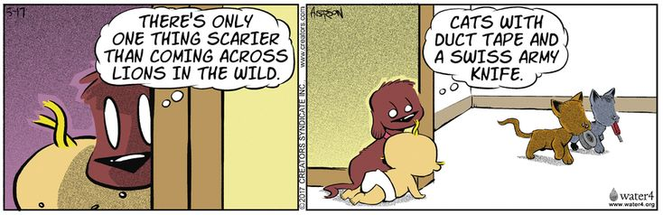 Dog Eat Doug by Brian Anderson for May 17, 2017   Read Comic Strips at GoComics.com