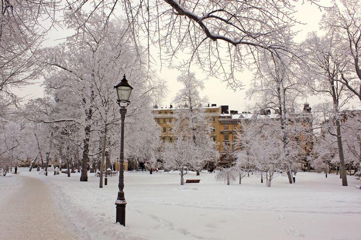 Invierno, Finlandia: Forests, Suomen Tasavalta, For, Gentlemen S Club, Community, Some Things, Places, Fotográfica Suomen