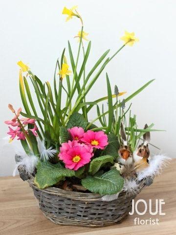 Tento rok pro vás na Velikonoce máme připravený tip na košík osazený jarními květinami, který hravě zvládnete udělat i sami doma. Pokud budete chtít, rádi jej pro vás připravíme my.