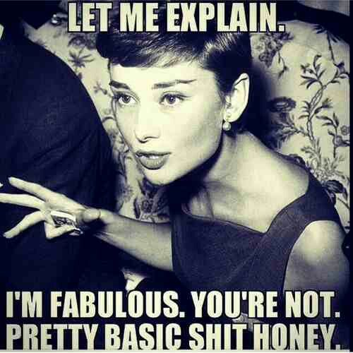 Im fabulous she says! Even though I find this funny it would not be funny in my real world. It is not right to hurt others no matter how pretty or rich you are.
