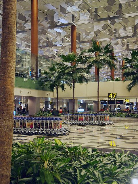 Changi International Airport, Terminal 3, designed by SOM (Singapore) #architecture