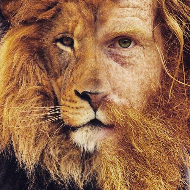    BBA    BEARD OF THE DAY     @conway_sean www.thebeardedbrotherhood.net  WORLD WIDE SHIPPING ✈️ #bbapparel #beard #beards #beardedmen #bbmc #beardedvillains #beardgang #beardlife #beardbrand #bobber #bobbers #barber #barbers #mma #bjj #bobberheads #motorcycle #tattoos #crossfit #fitness #envybeards #pogonophile #barberlife #australia #melbourne #sydney #brisbane #perth #goldcoast #positivebeard