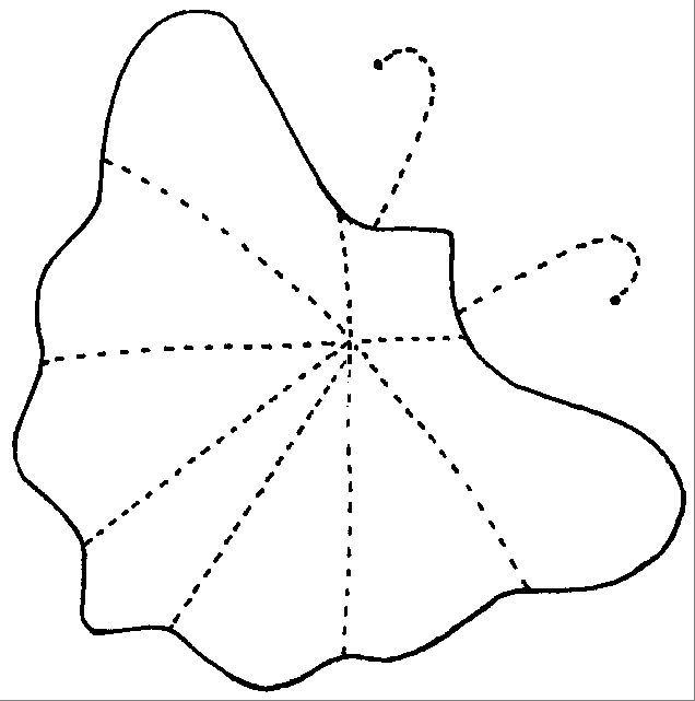Best Butterfly Applique Patterns Images On