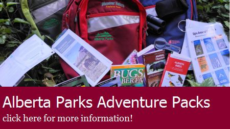 Heading off to the Foothills, Kananaskis or Mountains for some family fun? Thanks to Alberta Parks, five Marigold libraries are the lucky recipients of Explorer Packs. The packs include a variety of activities, guides, equipment like magnifying glasses and binoculars, and safety information to help people explore nature using their senses, answer questions they have about what they see or experience, and learn how to play safe in the mountains.