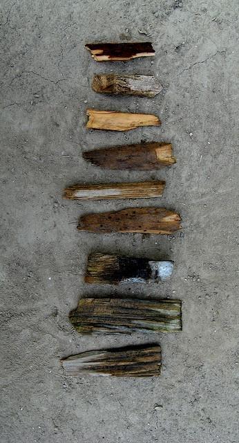 Black Wood on Flickr