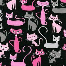Robert Kaufman - Cats