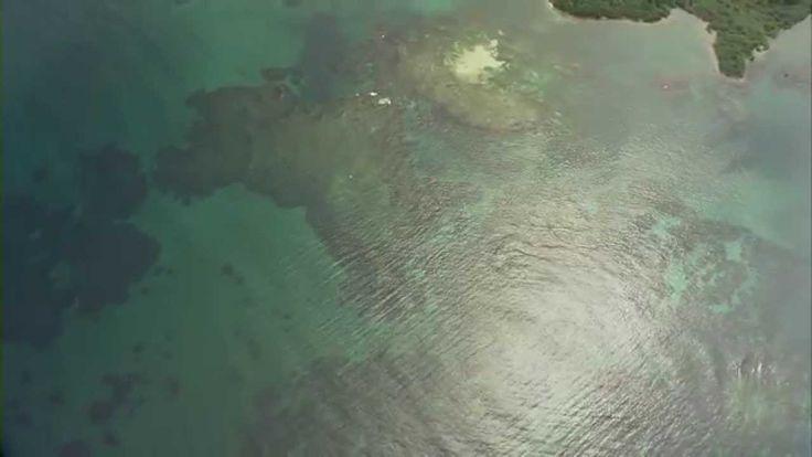 Eden Sustainability   Discover Panama   Video 2   Magnificent Panama   Produced by Colibri Productions #Panama #EdenPanama