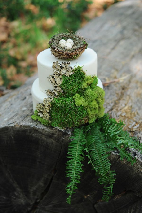 Woodland-themed wedding cake with ferns and moss - love the adorable nest with eggs on top #wedding #weddingcake #woodland #moss #forestwedding