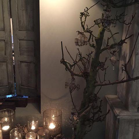 Wilt u dit jaar geen echte kerstboom in huis maar zoekt u wel een alternatief? Dan hebben wij onze perenbomen! Deze bomen zijn stoer, robuust en leuk te versieren met bijvoorbeeld de Hoffz kerstdecoratie! Wij hebben hem op een oud houten bankje gezet schuin tegen een kast, maar ze kunnen ook prima recht staan op de grond. #hoffz#decoratie#kerst#windlichten#perenboom#gezellig#warm#sfeervol#interieur#landelijk#wonen#feestdagen#kerst#esatto#by#ravensbergen#interieurs