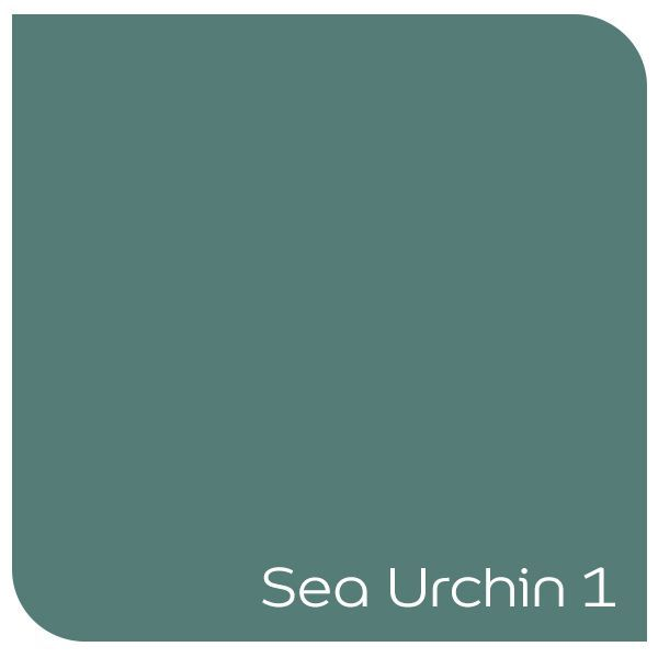 Sea Urchin 1 - a great colour for upcycling old furniture. Click the colour to order a tester!