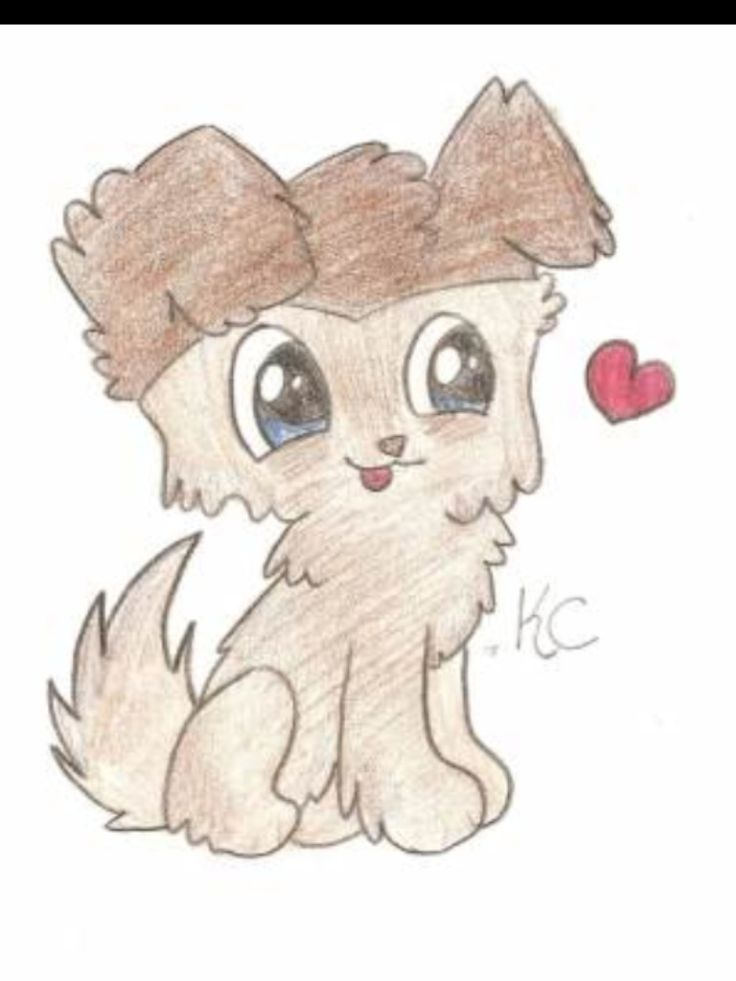It's just a graphic of Irresistible Lps Collie Drawing