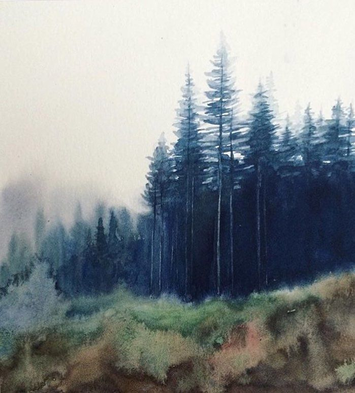 Watercolor Forest Misty Forest Watercolor Landscape Pine Trees Misty Pines Watercolor Landscape Paintings Pine Tree Painting Watercolor Landscape
