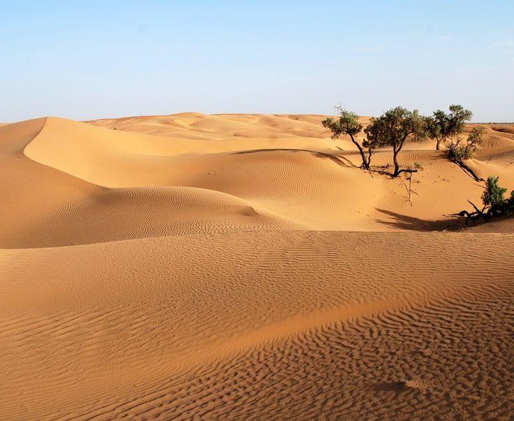Erf Ch'gaga, les grandes dunes de sables proches de M'hamid el Ghizlane.