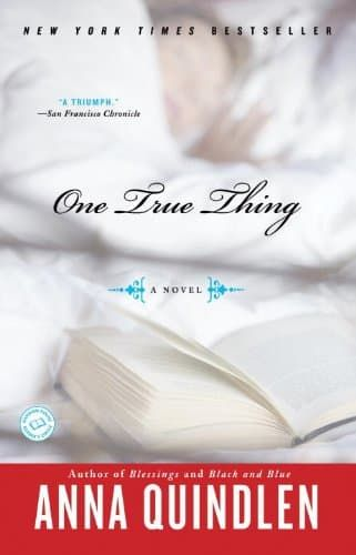 Right now One True Thing by Anna Quindlen is $1.99