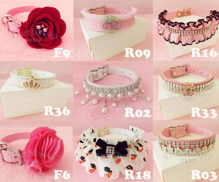 2012 Rhinestone in Fashion Dog Pet Cat Leather Collar Choose Size XS s M