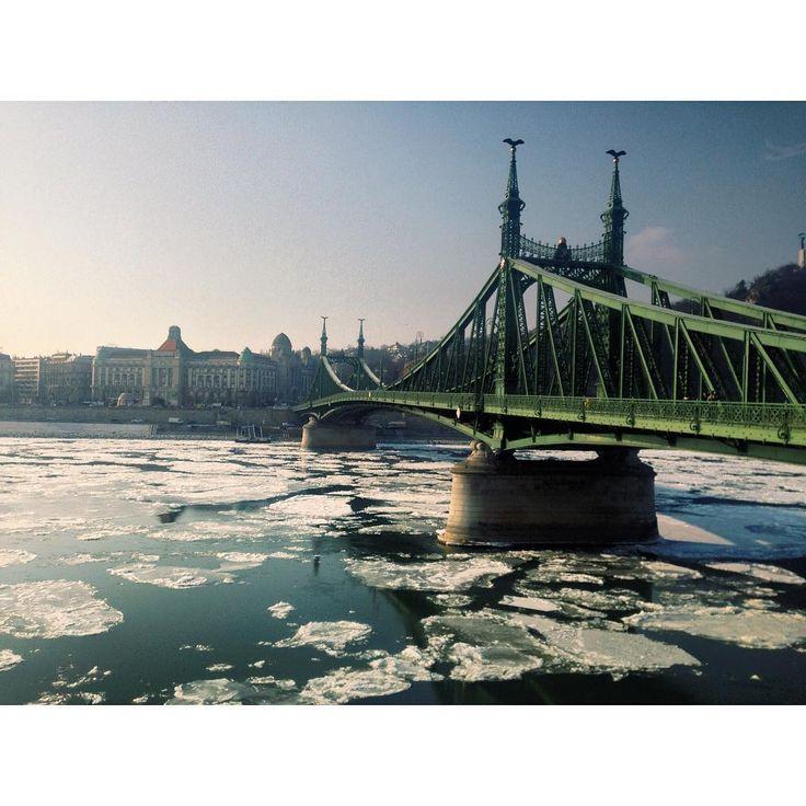 ❄️🌬#ice #duna #whereistand #libertybridge #view #cityview #budapest #city #bridge #winter #minus #babyitscoldoutside #hungary #frozen