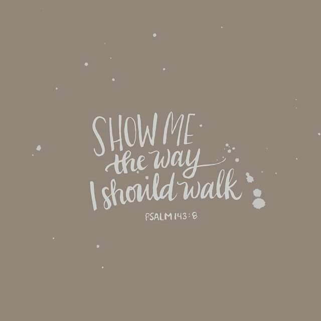 Show me the way I should walk. ~ Psalm 143:8