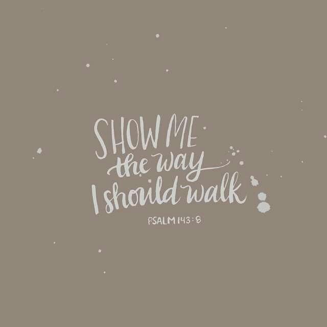 Show me the way I should walk. ~ Psalm 143:8 <3